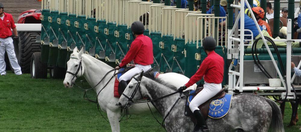 香港沙田賽馬